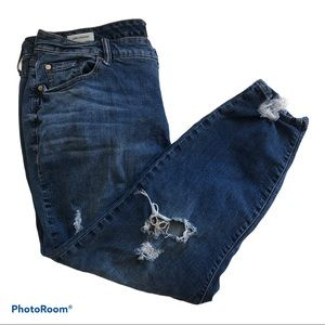 Torrid girlfriend heavily distressed Jeans– 20 R